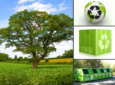 Recycling bin, Trees, recycle goods, go green, recycle boxes
